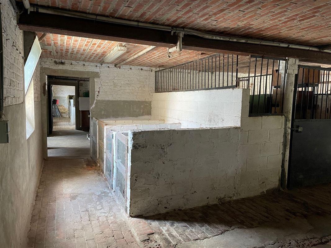 Foto 16 : Woning te 3440 ZOUTLEEUW (België) - Prijs € 485.000