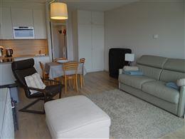 zongerichte moderne studio met zicht op de duinen - zonneterras - living met divanbed 1 x 2 - ingerichte open keuken met koelkast, keramisch kookfornu...