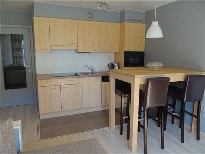 A LOUER A L'ANNEE - nouvel appartement entre Nieuport Bain et Ville - salon avec cuisine ouverte, équipée, salle de bains équipée avec douche - po...