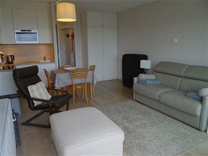 studio ensoleillé et renouvelé avec vue sur les dunes - terrasse - living avec divan-lit 1x2 - cuisine ouverte équipée d'un frigo, un micro-onde c...