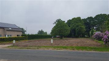 bouwgrond te koop te ZONHOVEN (3520)