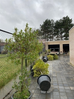 Foto 5 : Projectgrond te 9990 MALDEGEM (België) - Prijs € 365.000