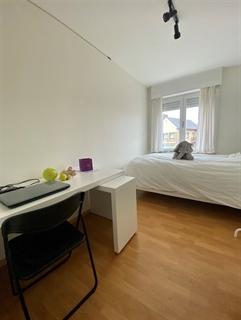 Foto 4 : Appartement te 8200 SINT-MICHIELS (België) - Prijs € 695