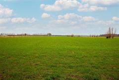 Foto 27 : Villa te 8340 SIJSELE (België) - Prijs € 599.000